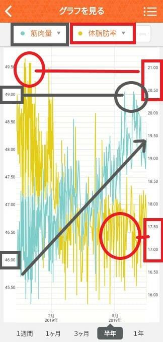 加工済2019年2月から半年のグラフ画像